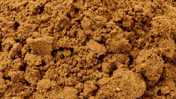 Builder's Sand